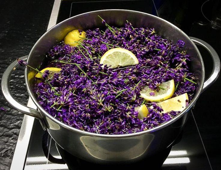 Voňavý levandulový sirup | Le Monde Fleuri