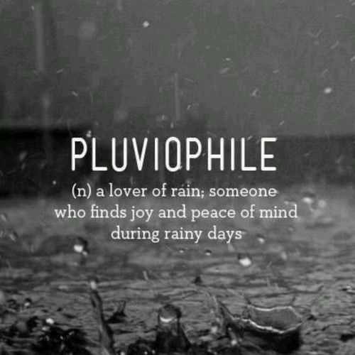 Cold Rainy Day Quotes: 25+ Best Ideas About Rain Tattoo On Pinterest