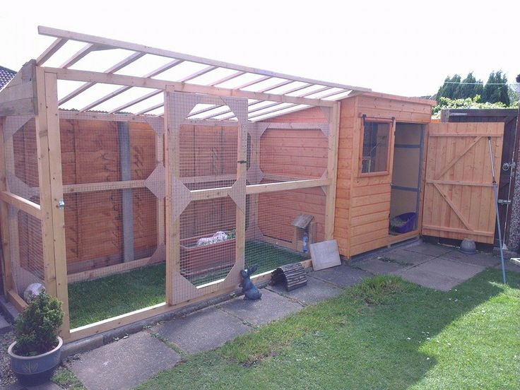 A recently converted new shed for some very lucky bunnies. This is a fantastic home for bunnies!