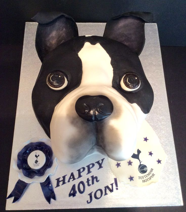 A 3D Boston Terrier birthday cake