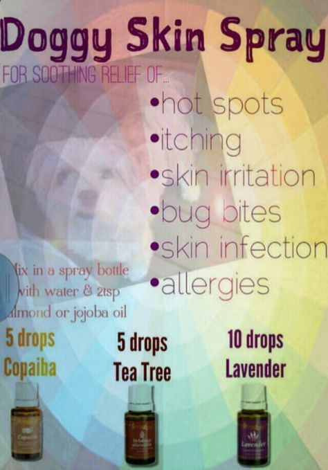 #youngliving #essential # oils for #dogs #skin #young living distributor