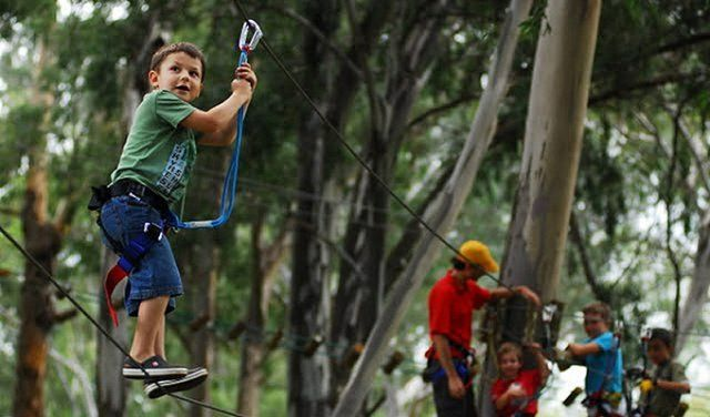 Acrobranch Constantia | Fun Things to Do with Kids, Family-friendly Ideas & Children's and Adult Outdoor Activities Ziplining in Cape Town.
