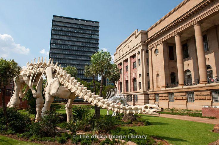 The National Museum of Natural History, Pretoria - toen nog Transvaal museum