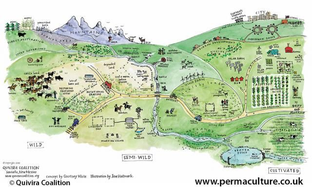 """Here's permaculture thinking in action - carbon sequestration, environmental restoration, food stability, & economics - with a foundation of hope for the future."" -Permaculture Magazine article share"