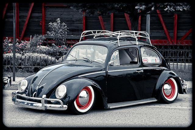 vw ... fusca ... beetle ... fuk ... bug
