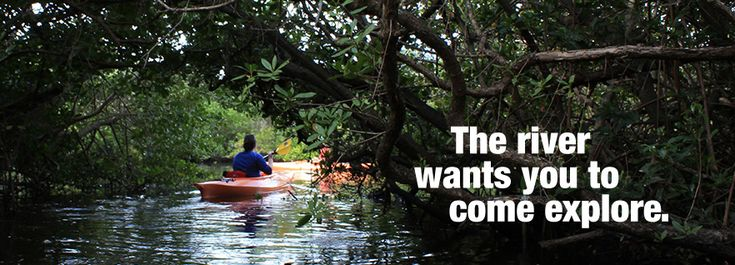 Frog creek kayaking palmetto florida historic terra