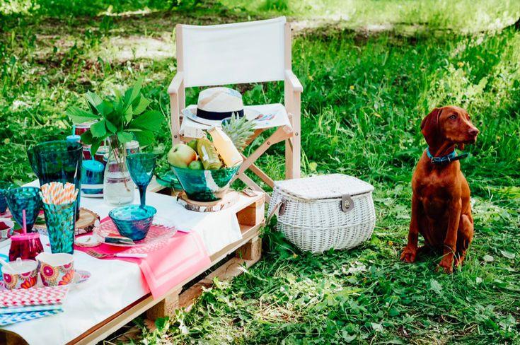 DUKA summer vibes picnic chill relax kitchen garden fun bbq outdoor hygge friends food together scandinavian party dog basket grass