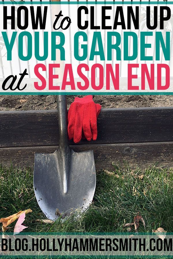 Put Garden To Bed End Of Season Clean Up Welcoming Simplicity Gardening For Beginners Growing Organic Vegetables Gardening Tips