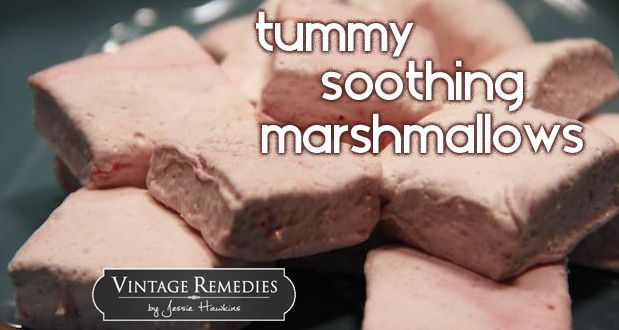 Stomach soothing minty marshmallows. Tasty and healing!