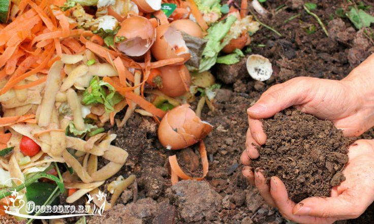 Компост в домашних условиях - подробная инструкция, а также как готовить компост зимой? Компост из листьев - как делать? Все ответы в статье...