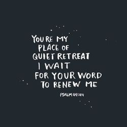 Psalm 119:114  (KJV) 114 Thou art my hiding place and my shield: I hope in thy word.