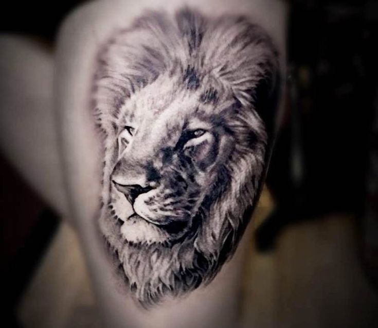 Lion tattoo by Kris Busching