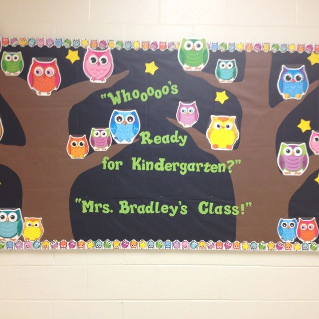 85 best Owl stuff images on Pinterest Classroom themes Owl