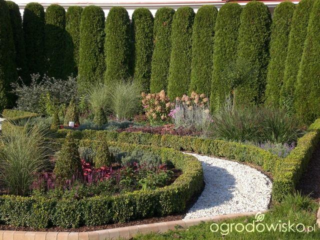 Ogród mały, ale pojemny;) - strona 51 - Forum ogrodnicze - Ogrodowisko