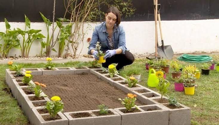 Como Hacer Un Jardin Pequeno Desde Cero Jardin Pequeno Como Hacer