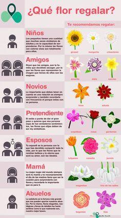 1000 ideas about flores arreglos on pinterest arreglos - Clases de flores y sus nombres ...