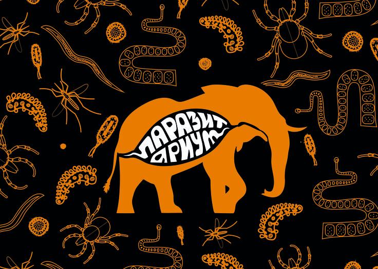 например слон