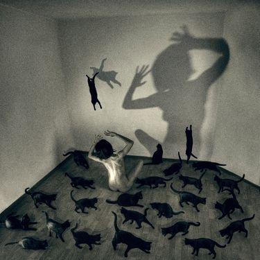 """Saatchi Art Artist Adina Rafaila; Collage, """"Onirik"""" #art"""