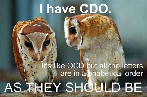 Wise Owls!: Animal Pictures, Laugh, Quotes, Funny Stuff, Humor, Things, Funny Animal, Owls, Animal Funny