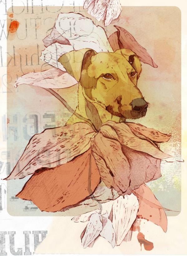 Illustrations by Maria Carolina Ramirez Alvarez | Art and Design