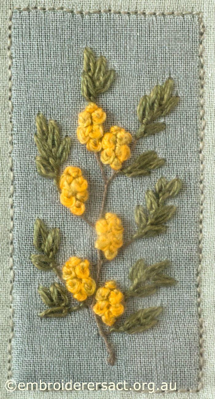 ノットの黄花