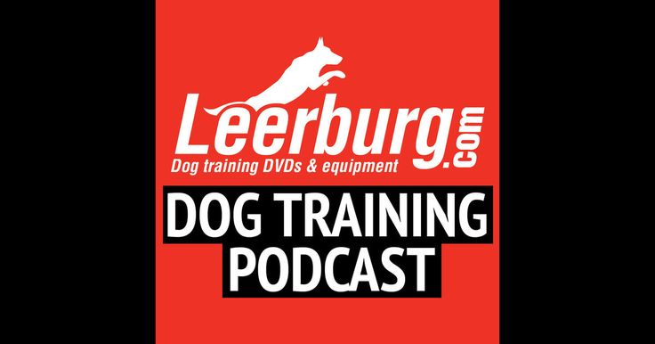 how to break up a dog fight leerburg