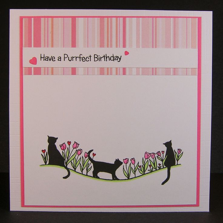 Designed by Allison Hugill using Little Claire Wavy Cats stamp