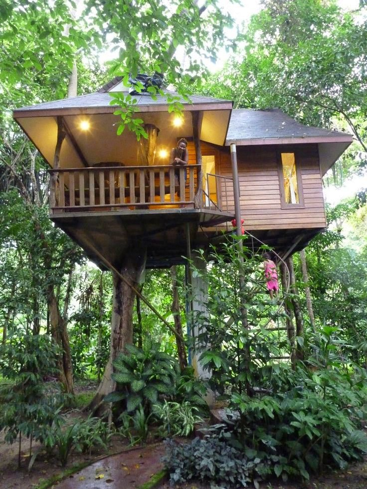 Best Cute Cottages Tree Houses Little Spaces Images On - Beautiful tree house designs