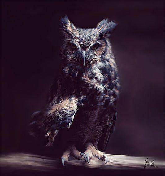 Go Left Studio | OWL