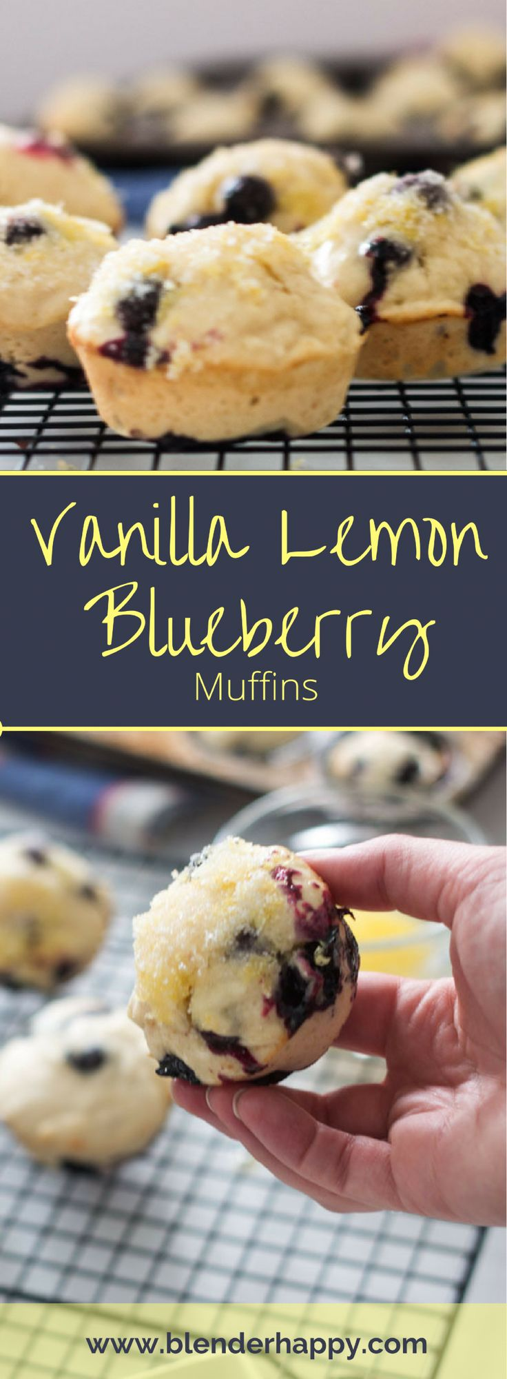Easy, delicious Vanilla Lemon Blueberry muffins are the perfect addition to any brunch menu. The decadent lemon butter + lemon sugar topping ensures a subtle lemon flavour in every bite. via @blenderhappy