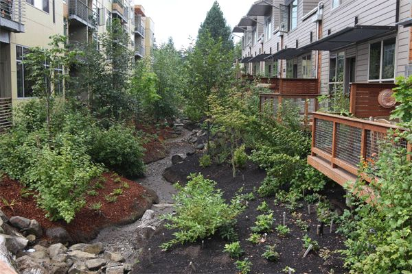 Tryon Creek Headwaters Project: A partnership with development to achieve stormwater/watershed objectives, including daylighting a stream, vegetated swales and ecoroofs. Portland, OR.