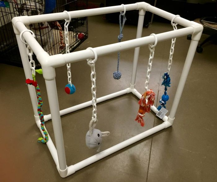 pvc puppy play gym with toys
