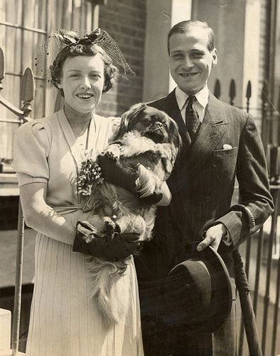 Prince and Princess Ludwig von Hesse-Darmstadt. Prince Ludwig was the last surviving member of the Hesse-Darmstadt ruling family. After his death, the Darmstadt claims & property passed to the Kassel branch of the Hessian ruling family.