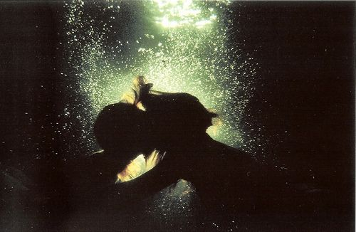 Gorgeous underwater photography by Zena Holloway.