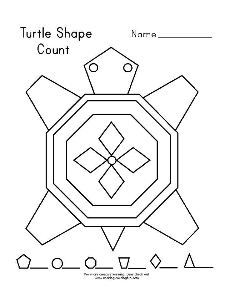 23 best Turtle Theme Unit Study Homeschool images on