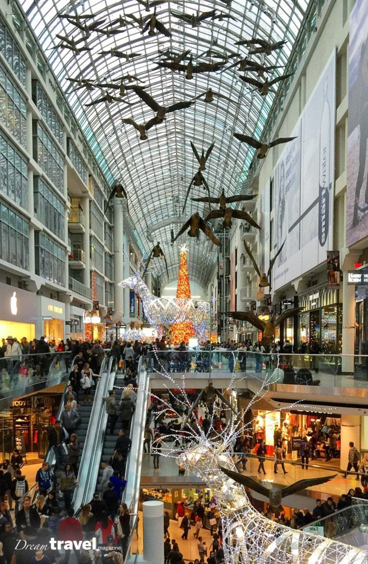 Indoor Family Fun Attractions In Toronto