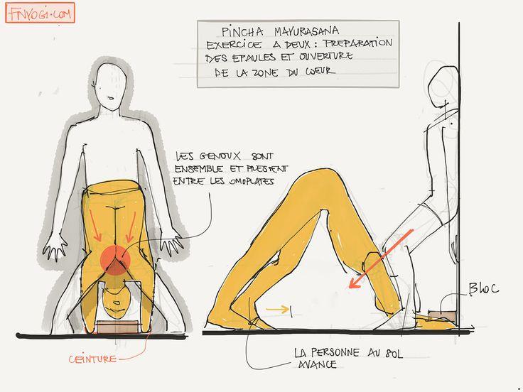 Préparation des épaules pour Pincha Mayurasana (suite)