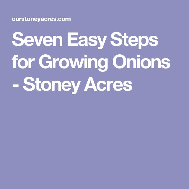 Seven Easy Steps for Growing Onions - Stoney Acres
