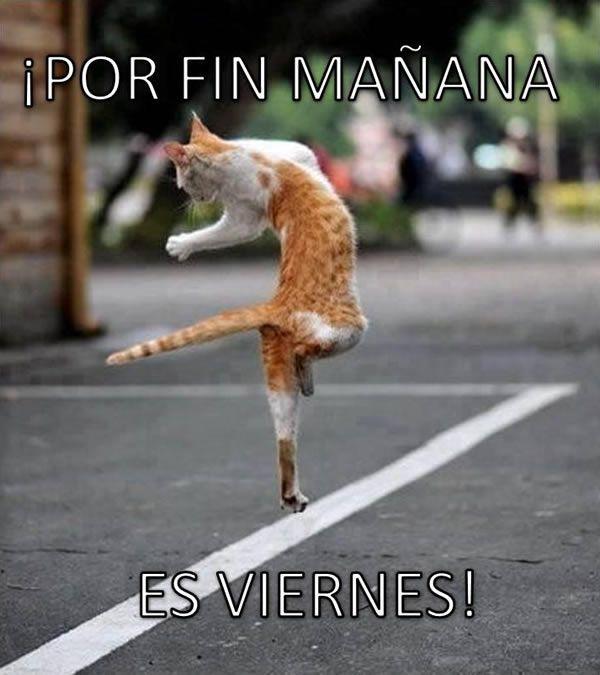 Imágenes de ¡Por fin Mañana es Viernes!