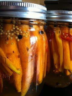 Beautiful Organic Carrots pickled with Black Peppercorns