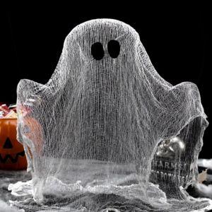 Φτιάχνουμε ένα τρομακτικό φάντασμα!
