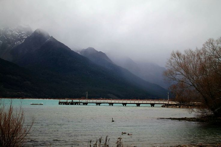 Wharf #wharf #nature #bird #swan #wood #tree #branches #water #lake #moutains #fog #snow #mist #pretty #beautiful #landscape #photography #Glenorchy #blue #queenstown #nz #newzealand