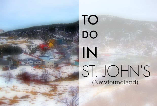 Things to do in St. John's, Newfoundland