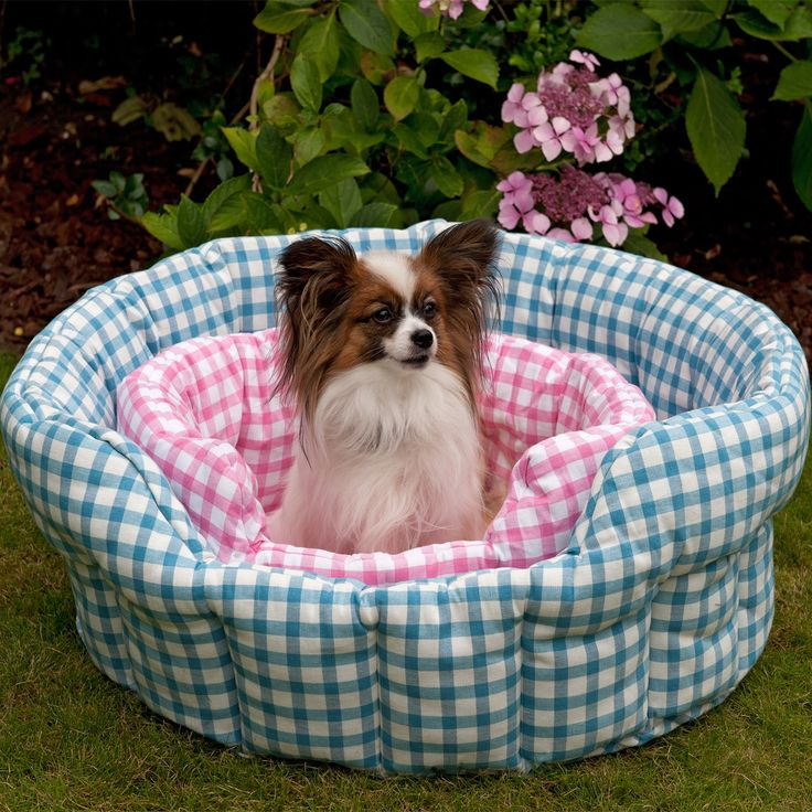 Our fabulous gingham #petbeds are perfect for your beloved #dog or #cat. Quilted with a removable base pad. Machine washable. 100% cotton. Available in 4 colors for small and large #pets, check them out at http://www.petit.com.au/store/pc/Win-Green-Pets-c457.htm #WinGreen #ilovemypet #petitaustralia #freedelivery #wholesale #retail #orderonline