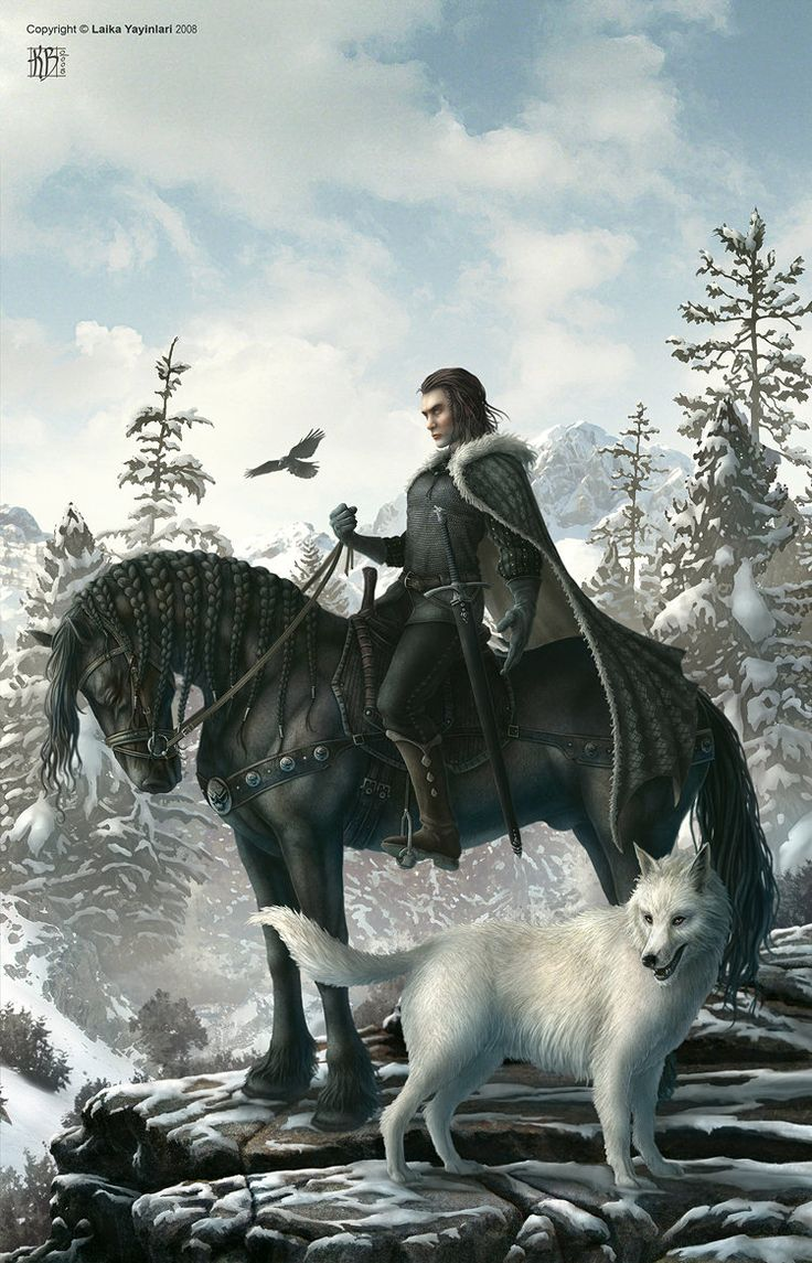 Jon Snow & Ghost - Game of Thrones - Kerem Beyit