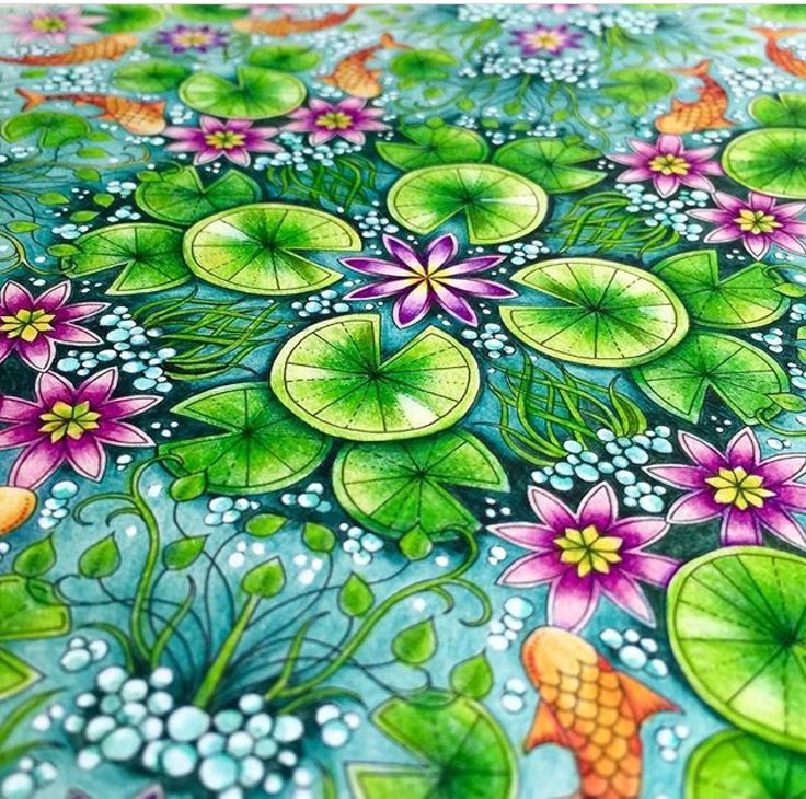 Best 25 Secret Garden Coloring Book Ideas That You Will Like On Pinterest