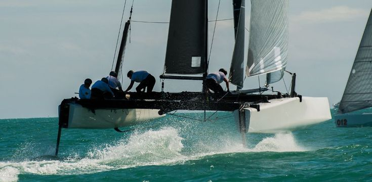 Image result for catamaran racing