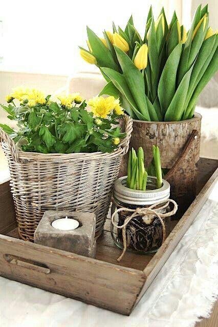 Frühlingsdeko ähnliche tolle Projekte und Ideen wie im Bild vorgestellt werdenb findest du auch in unserem Magazin . Wir freuen uns auf deinen Besuch. Liebe Grüße Mimi