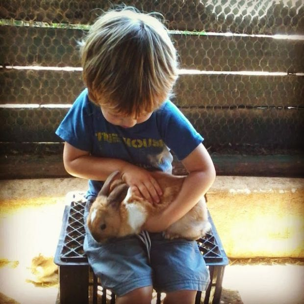 Your #Grootbos Moments [Week 3] - by Natasha Clark #BunnyRabbit http://www.grootbos.com/en/blog/travel/your-grootbos-moments/week-3