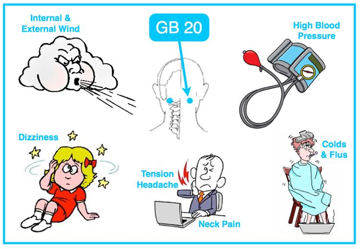 GB 20 Rocks internal and external wind! – Clears external wind-heat for fever & chills – Bring LV Yang down & eliminate internal wind for high blood pressure, tremors, dizziness & vertigo – Relieve tension (occipital) headaches & stiff neck – Clears the head for memory, neurological issues and sensory organs